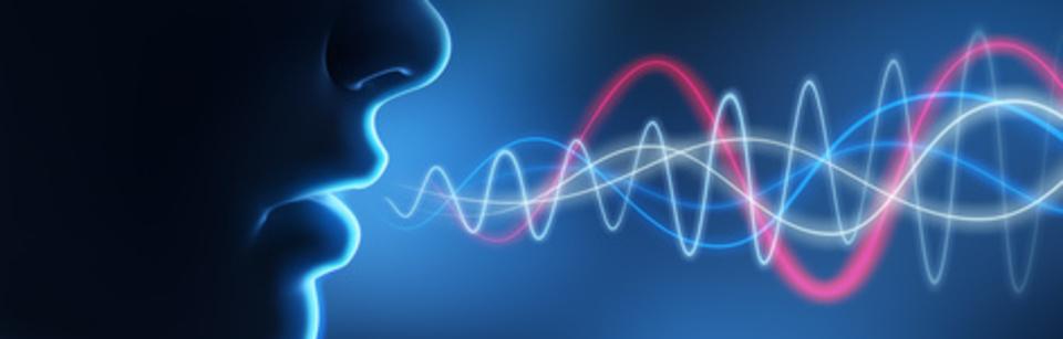 bei Sprach-, Sprech- und Stimmstörungen   ■ Diagnose  ■ Beratung  ■ Therapie
